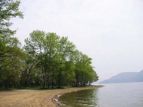 130531洞爺湖新緑.JPG