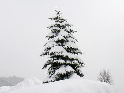 130311雪の洞爺村7.jpg