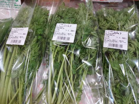 170502山菜 (2).JPG