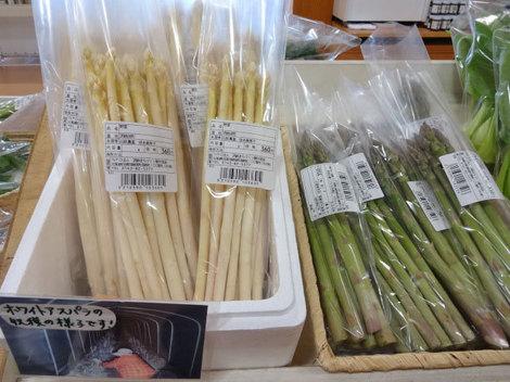 170502山菜 (7).JPG
