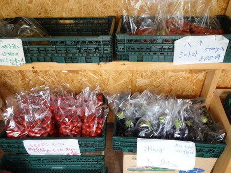 170828夏野菜 (1).JPG