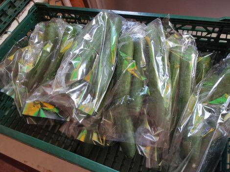 170828夏野菜 (2).JPG
