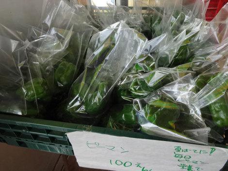 170828夏野菜 (3).JPG