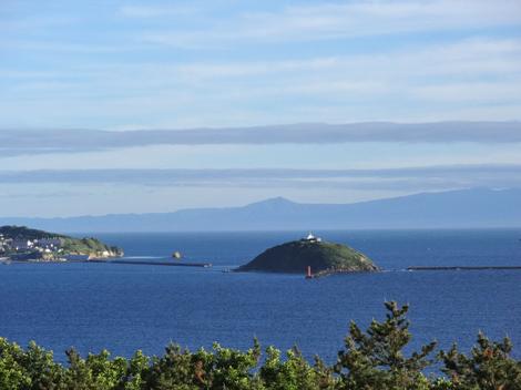 180626白鳥湾 (4).JPG