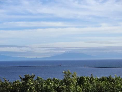 180626白鳥湾 (6).JPG