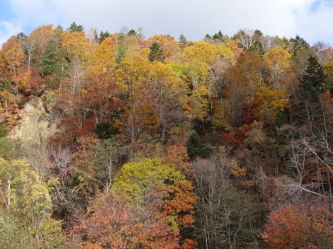 181023三階の滝 (3).JPG