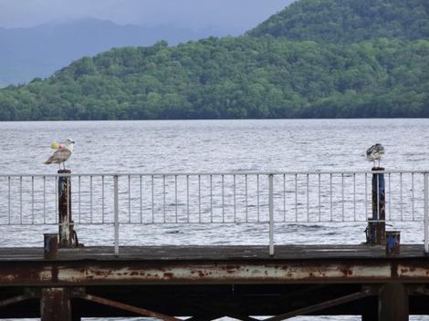 190528洞爺湖 (3).JPG