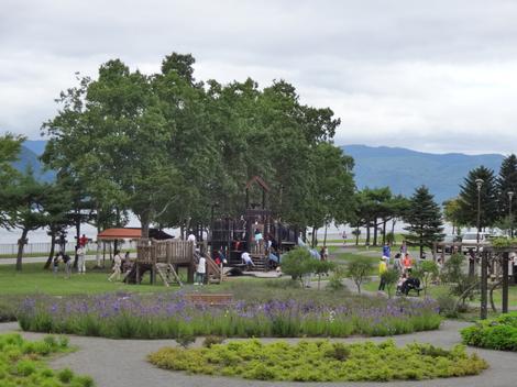 190819噴火記念公園 (10).JPG
