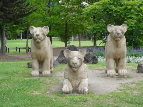 190819噴火記念公園 (2).JPG