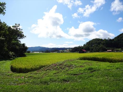 190825財田親水公園 (4).JPG