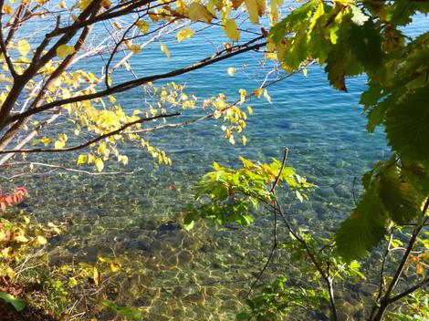191021洞爺湖紅葉 (5).JPG
