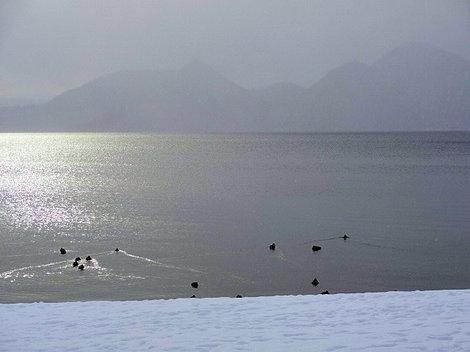 200125洞爺湖冬 (2).JPG