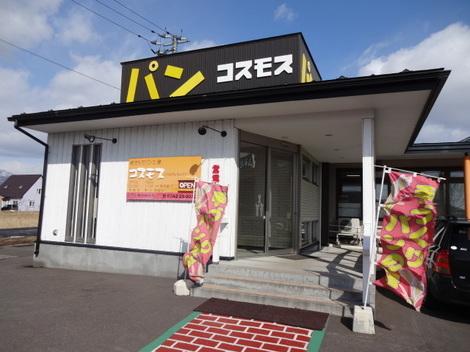 200222コスモス (1).JPG