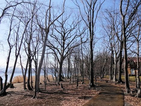 200327洞爺湖 (5).JPG