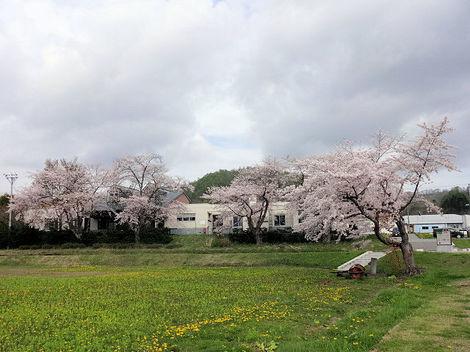 200516洞爺高校 (1).JPG