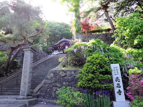 200610亮昌寺 (1).JPG