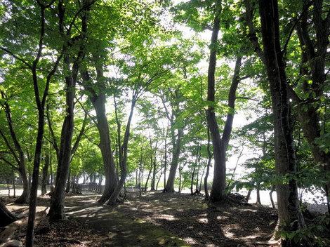 200827洞爺湖畔 (6).JPG