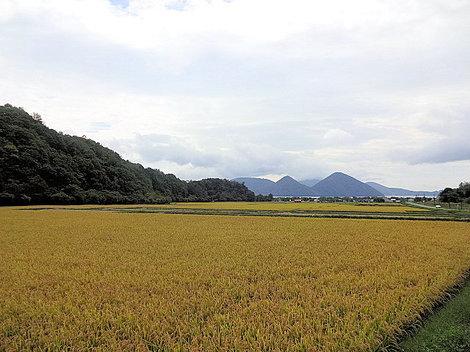 200919財田 (2).JPG