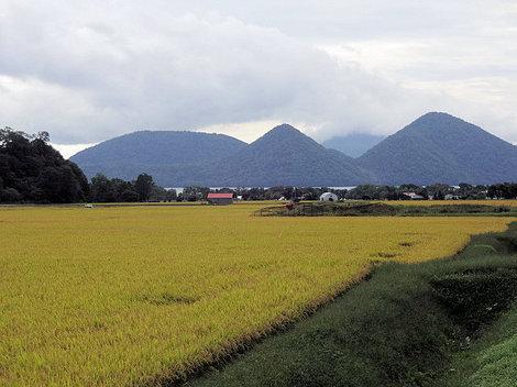 200919財田 (4).JPG