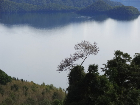 200922洞爺湖 (5).JPG