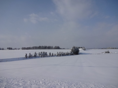 201231雪景色 (3).JPG