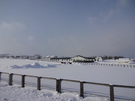 201231雪景色 (6).JPG