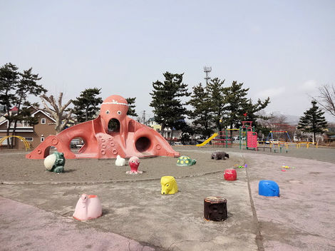 210327館山公園 (1).JPG