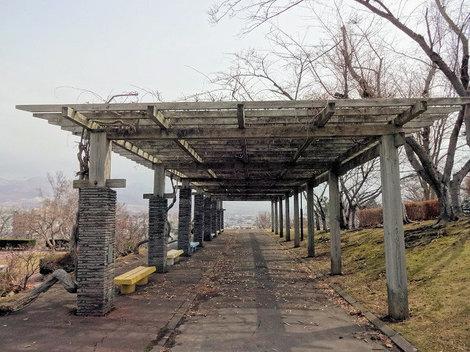 210327館山公園 (4).JPG