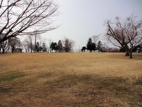 210327館山公園 (6).JPG