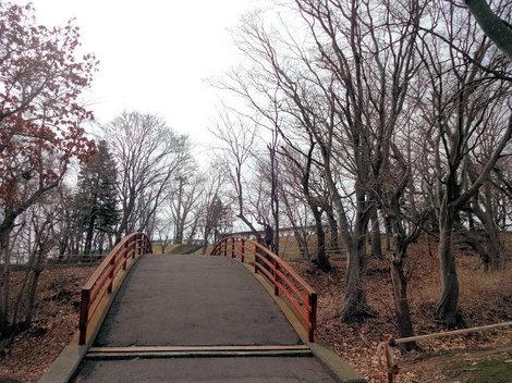 210327館山公園 (7).JPG