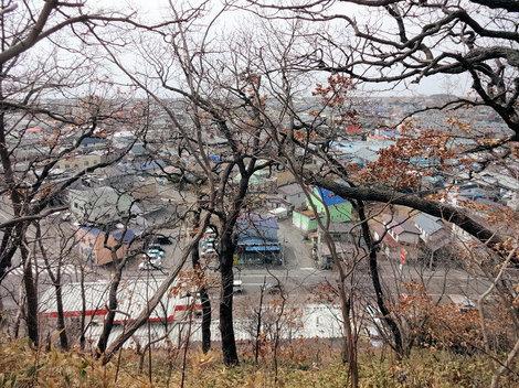 210327館山公園 (8).JPG